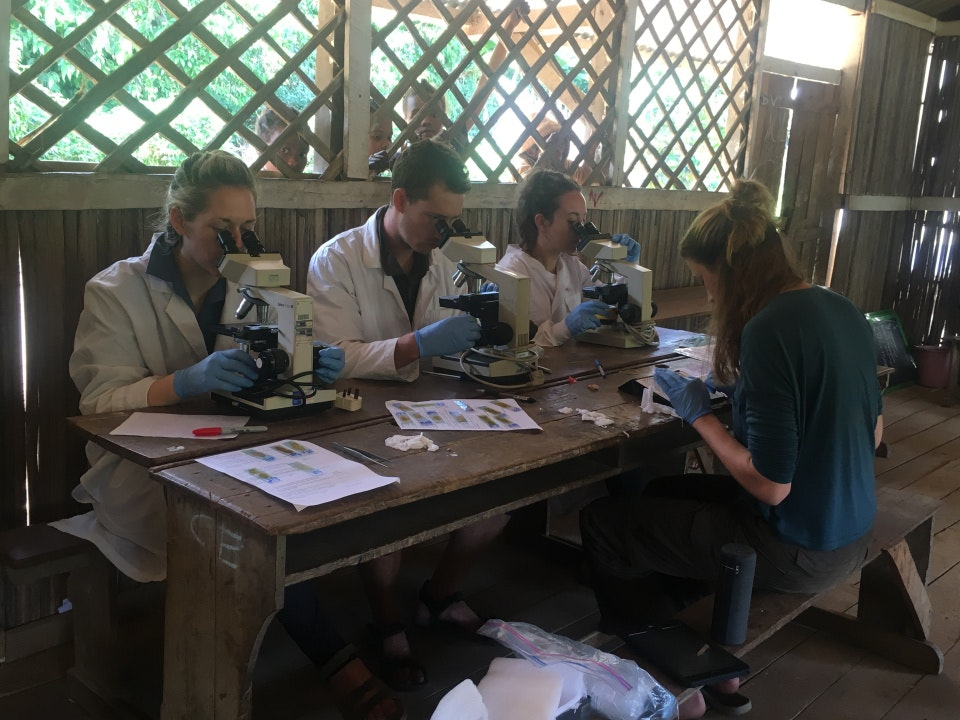 Madex 2018 - Schistosomiasis research in Madagascar