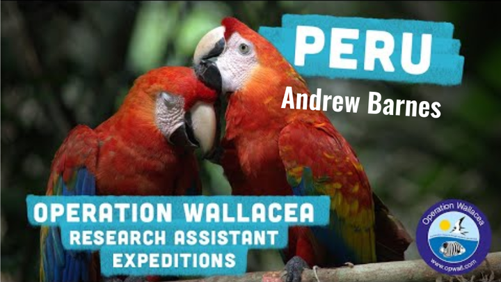 Peru Amazonian research expedition - Andrew Barnes