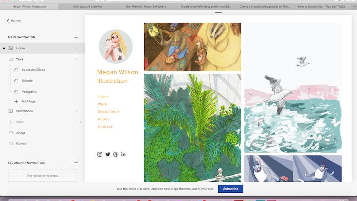 Illustration Online Shop and Website