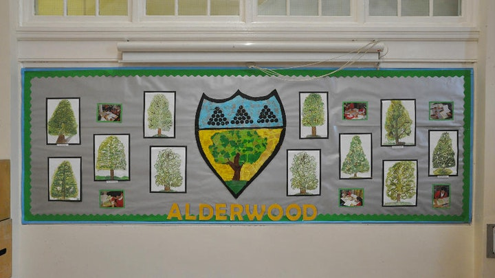 iPads for Alderwood
