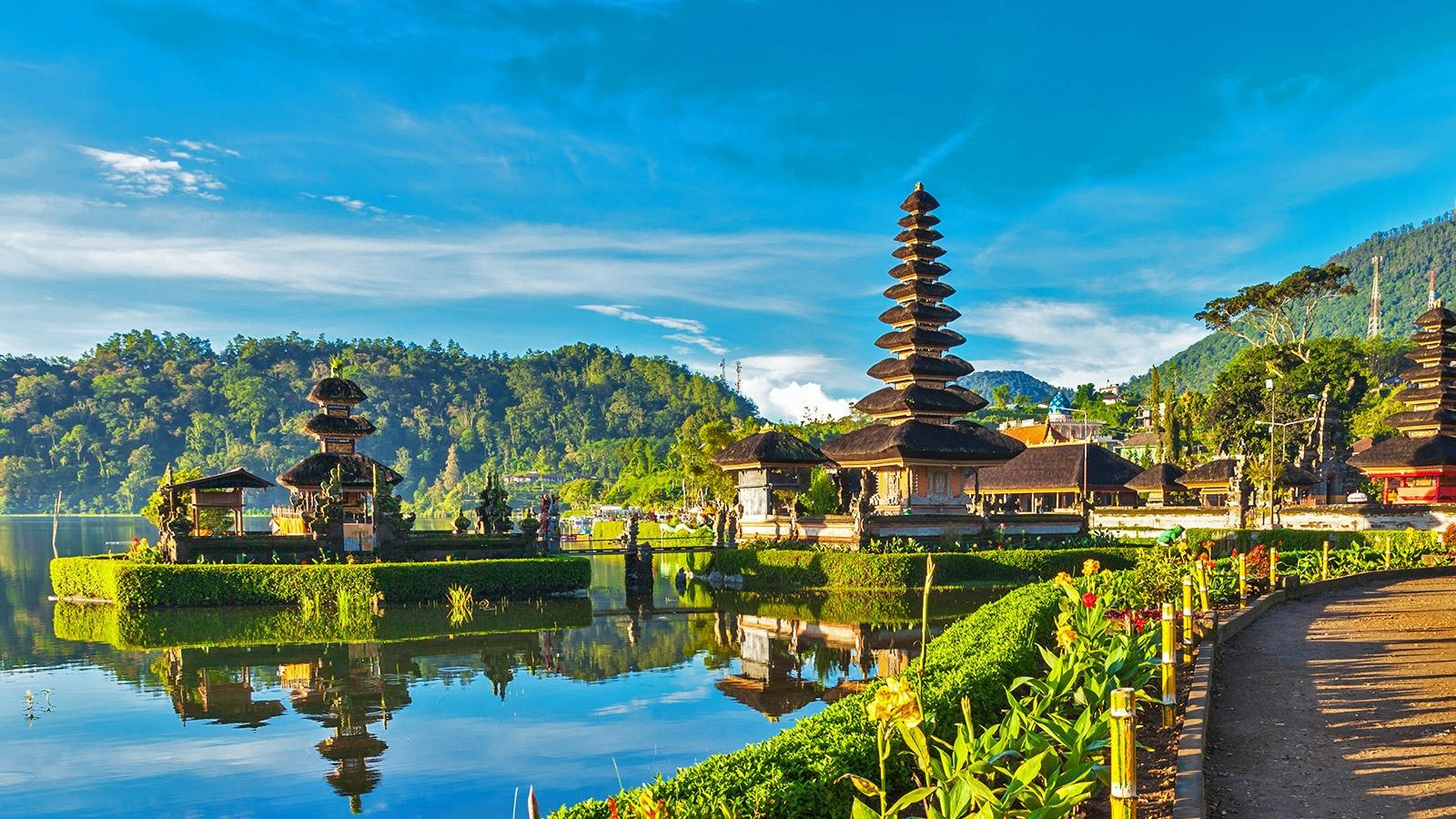 Mental health volunteering in Bali